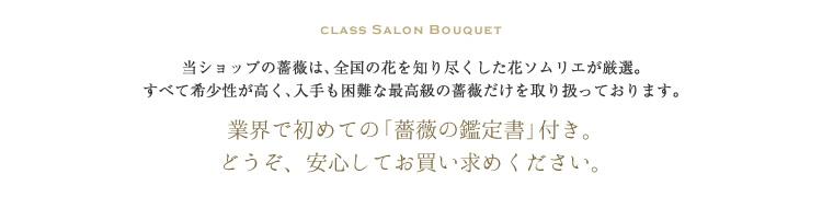 CLASS SALON BOUQUET
