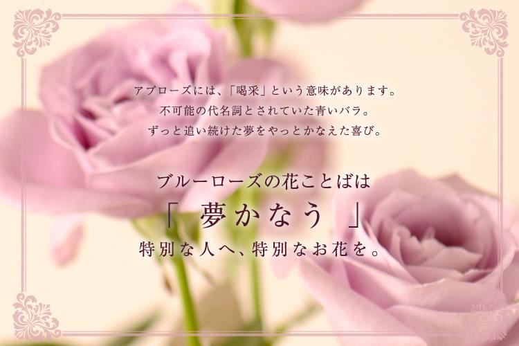 ブルーローズの花ことばは「夢かなう」