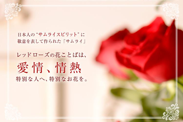 レッドローズの花ことばは「愛情、情熱」